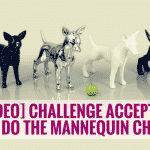 [VIDEO] Challenge Accepted: Puppies Do The Mannequin Challenge