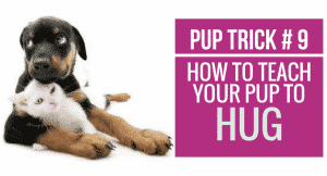 How to teach your pup to Hug