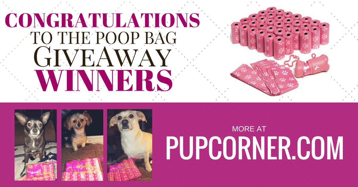 New Year Giveaway From PupCorner Winners