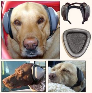 headphones for dogs to protect them from the noisy fireworks -- 7 ways to protect your dogs during fireworks