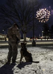 Man desensitizing dog to fireworks--7 ways to protect your dogs from fireworks