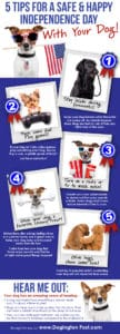 Infographic with information about July 4 & Pet Safety-- 7 ways to protect your dogs during fireworks